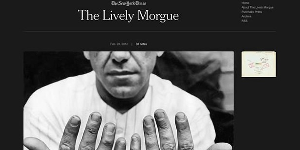 The-Lively-Morgue